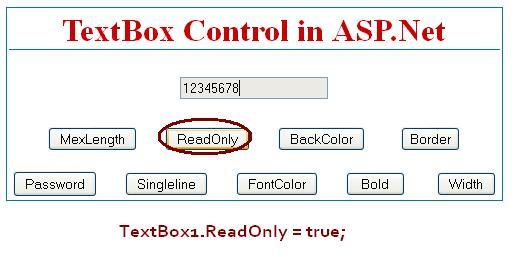 TextBox ReadOnly - ASP.Net
