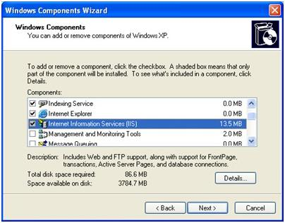 How to install IIS