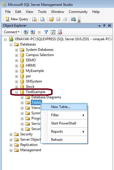 Create New Table in SQL Server Management Studio 2008.