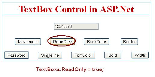 TextBox ReadOnly - ASP.Net
