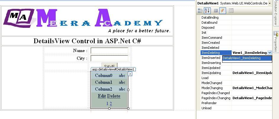 DetailsView in ASP.Net