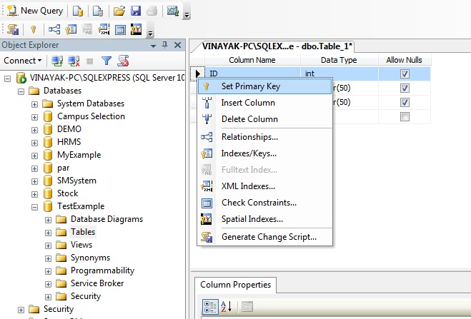 Assign Primary Key on column in sql table.