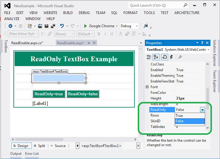 ReadOnly TextBox Example in ASP.Net